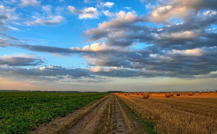 Connectivity und die Landwirtschaft 4.0